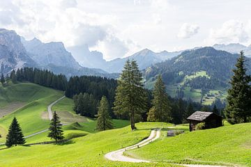 Wanderweg durch die italienische Landschaft von Lynn Haverhals