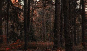 Autumn Dreams (3/4) van Remco Lefers