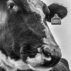 Sjaantje 11 Black&White  van Boris de Weijer