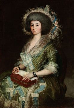 Portret van mevrouw Ceán Bermudez, Francisco de Goya en Lucientes