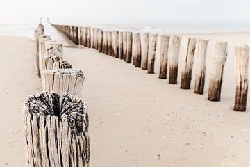 Strandpfähle in Domburg von Dana Schoenmaker