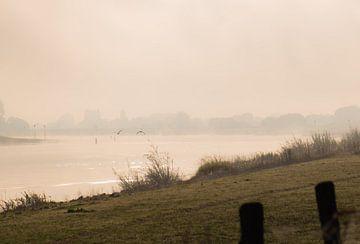 rivier Rijn in de mist van Tania Perneel