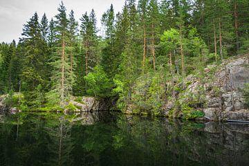 Reflectie - Noorwegen van Evy De Wit