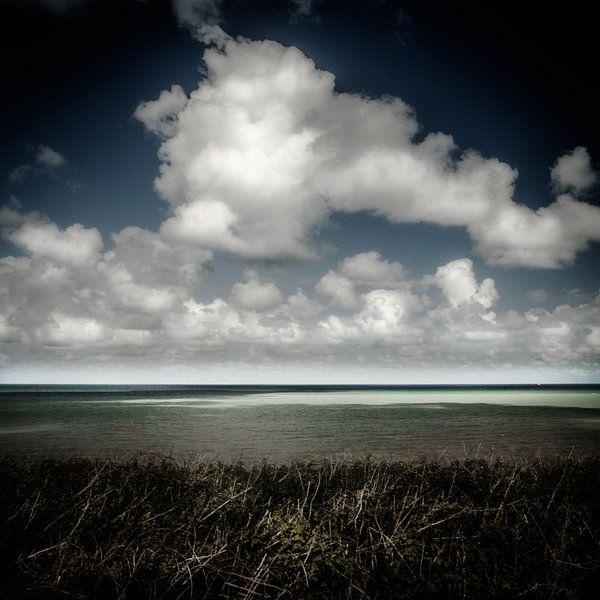 Blue reflecting green van Ruud Peters
