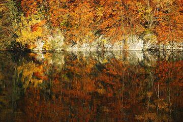 golden fall  van
