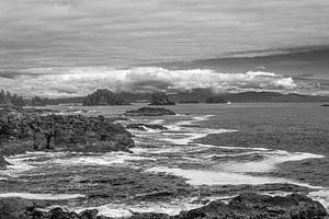 De ruige rotskusten van de grote oceaan