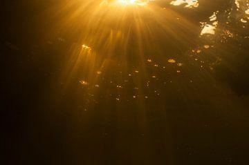 zonsondergang onderwater sur Annelies Cranendonk