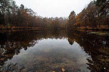 See im Herbst van