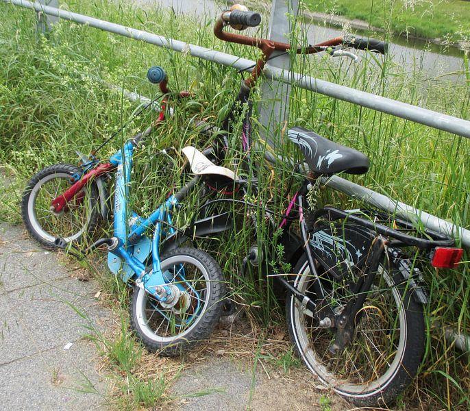 The two Bicycles van Jon Houkes