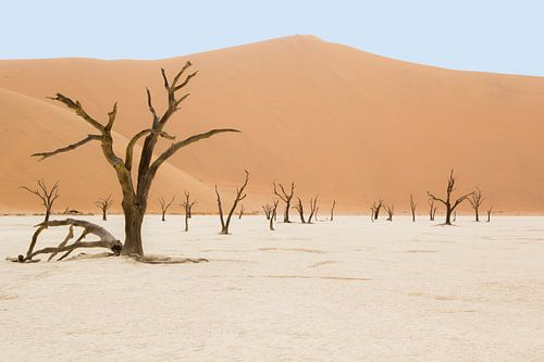 Deadvlei Namibia von