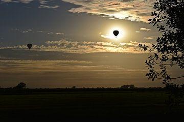 Luftballons in der Abendsonne von Daphne van der straaten