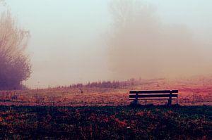 Bankje In De Ochtend Mist - rood, grasveld, stilte, waterkant