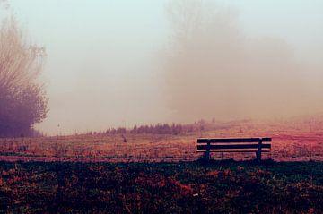 Bankje In De Ochtend Mist - rood, grasveld, stilte, waterkant van Nicole Schyns
