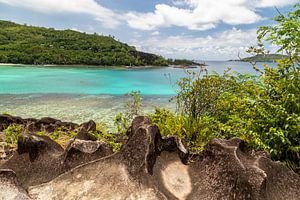 Panoramablick auf eine Bucht auf der Seychelleninsel Mahé