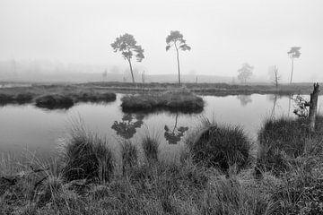 Vennen landschap monochroom von Elroy Spelbos