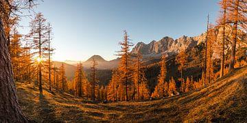 Goldener Sonnenuntergang von Coen Weesjes