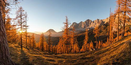 Herfst in de Alpen van Coen Weesjes