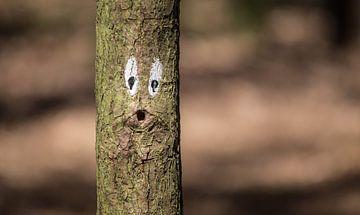 Ow boom :) sur Martijn van Dellen