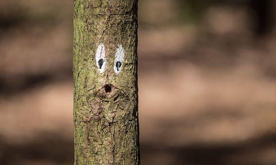 Ow boom :) van Martijn van Dellen