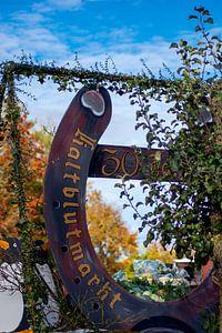30ste verjaardag van de Laupheimse koudbloedmarkt