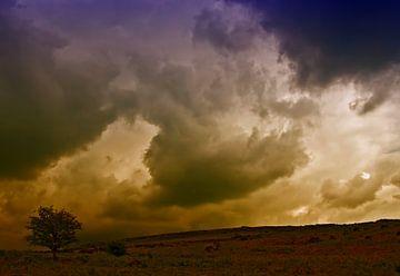 Donker in Dartmoor van