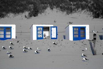 Strand Texel Koogerstrand strandhuisje van Arjan Boer