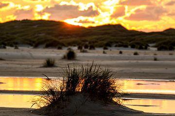 Dünen im Sonnenuntergang auf Amrum van Alexander Wolff