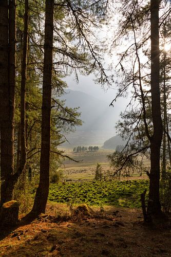 Doorkijkje in de Phobjikha Vallei