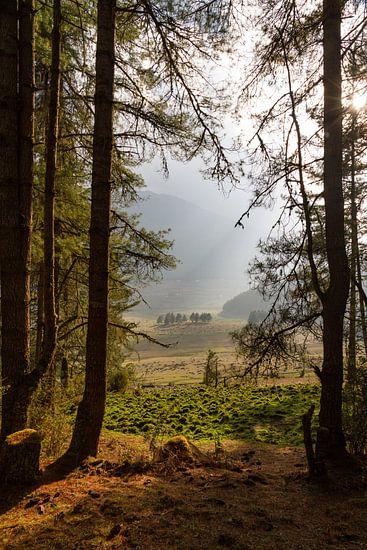 Doorkijkje in de Phobjikha Vallei van Erwin Blekkenhorst