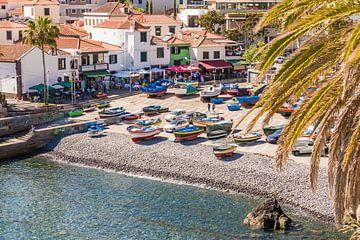 Fischerboote in Câmara de Lobos auf der Insel Madeira von Werner Dieterich