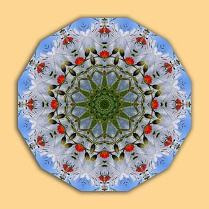 Red Poppies, Flower Mandala
