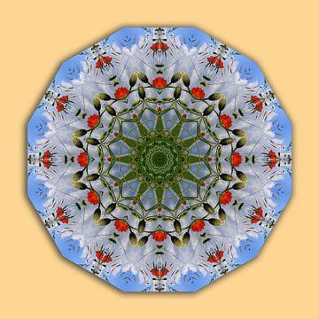 Red Poppies, Flower Mandala van Barbara Hilmer-Schroeer