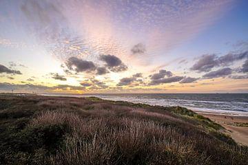 Duin, strand en zee bij Wassenaarse Slag van Dirk van Egmond