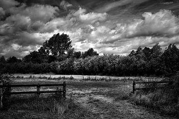 De open poort (Z/W) van Marius Ahlers