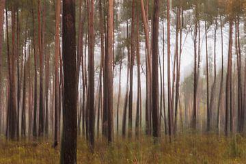abstracte bomen part 2 van Tania Perneel