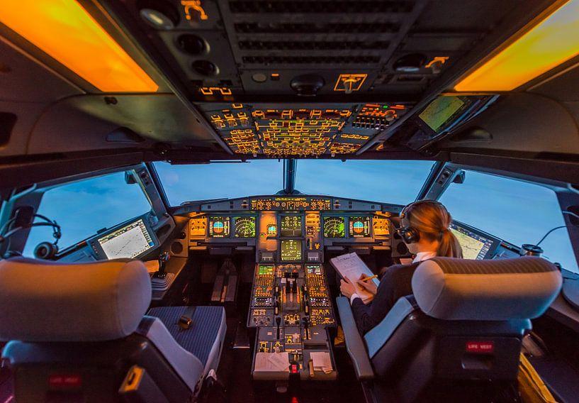 Cockpitwerk van Denis Feiner