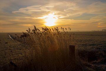 zonsopkomst in de winter van Gertjan Hesselink