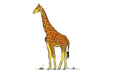 Farbe Giraffe von Teun Poppelaars