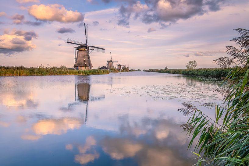 Peaceful van Sander Poppe