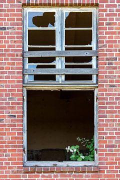 Zerbrochenes Fenster mit Blumenschmuck von Uwe Ulrich Grün