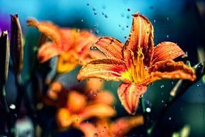 Bloemen muurschildering zomer