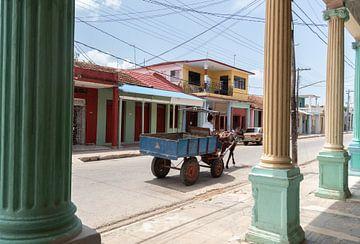 Paard en wagen Cuba van Tom Hengst