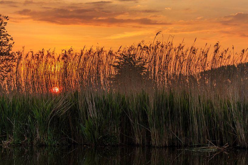 Sfeervolle zonsopkomst tijdens een boottochtje op de Blankaart te Diksmuide van Krist Hooghe