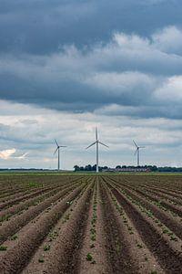 drie molens in Flevoland van Robin van Maanen