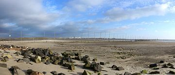 Stuifdijk de hors Texel van Ronald Timmer
