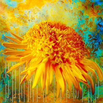 Sommerblume von Helga Blanke