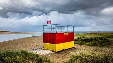 Lifeguard sur rosstek ®