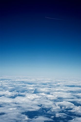flying high van