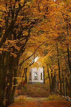 Belvédère van het bos van Leyduin in de herfst van Discover Dutch Nature