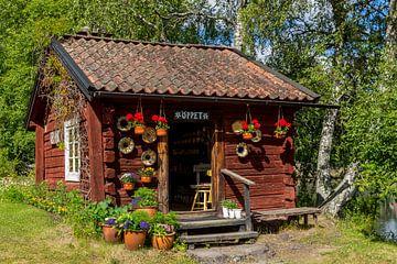 Schwedisches Geschäft von Adelheid Smitt